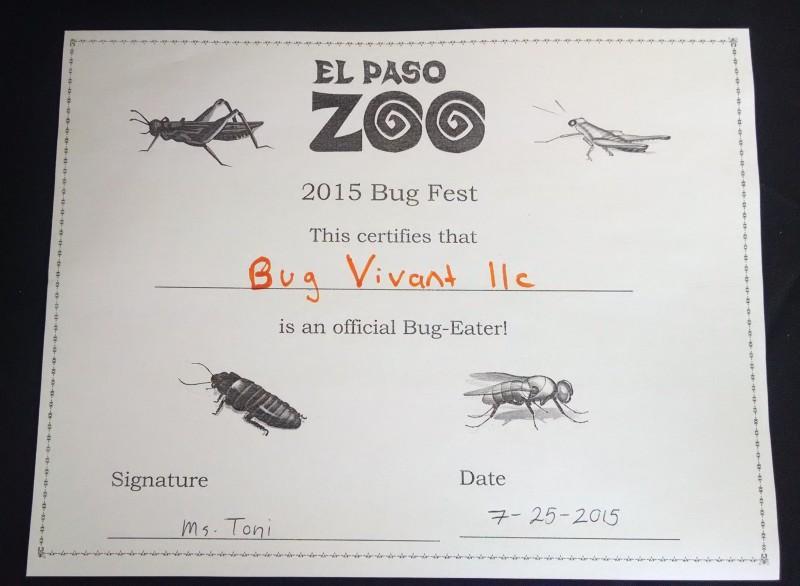 el-paso-zoo-bug-fest-