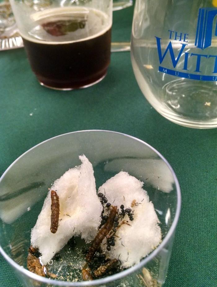 bug-dinner-3