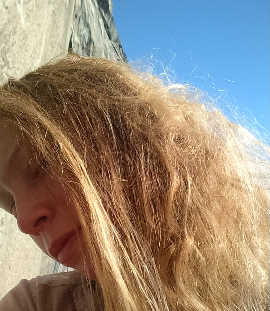 bugwall-hair