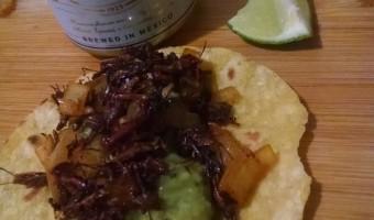 Gringo Chapulines Recipe
