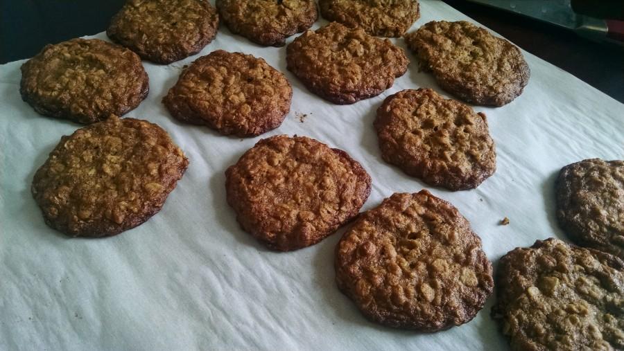 oatmeal-cricket-cookies-7