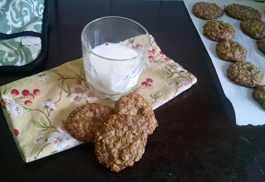 oatmeal-cricket-cookies-8